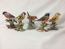 5x Maruri Bird Ornaments Goldfinch Wren Red Start Yellow Hammer Bullfinch #G477