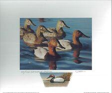 CALIFORNIA #31 2001 STATE DUCK PRINT Robert Steiner, Color Remarque #75/150