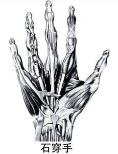 Stone Penetrating Fingers Dit Da Jow Training & Healing Liniment - 2 oz bottle