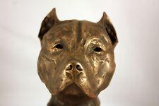 Limited Edition Bronze Pit Bull Terrier Sculpture Ornament Figurine