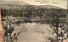 Montana Postcard Pond Lilies near Columbus Mont Williams Photoette Vintage