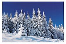 Winter Snow Scene Backdrop FROZEN WINTER LAND Wall Mural PROP LARGE NICE NEW