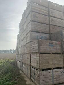 Extra Large Reclaimed Timber Wooden  farm Boxes 200 X 120 Cm