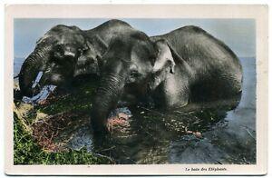 SAIGON  le bain des eléphants  (65)