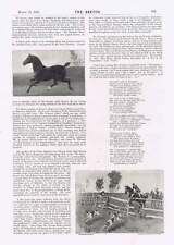1895 Hackney Show For Horses China Japanese War Mr Henry Norman