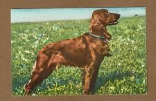 Irish Setter Dog, edition Stahle, Printed in Switzerland, No 1