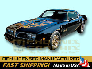 1976 1977 1978 Pontiac Firebird Trans Am Special Edition Bandit Decals & Stripes