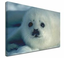 More details for snow white sea lion x-large 30