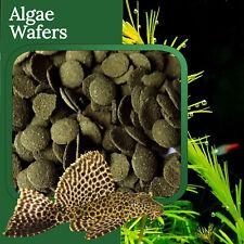 Algae Wafers sinking 1 Kg Bulk Bag Pleco Aquarium Tropical Fish Food wafers K&M
