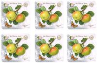 Les Fruits du Jardin Apple Kew Gardens Set of 6 Cork Backed Drink Coasters New
