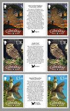 Gibraltar 2012 frankeer vogels birds oisseaux gutterpairs  postfris/MNH