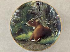 Summer Velvet by Bob Travers Pride Of The Wilderness Danbury Deer Buck Plate