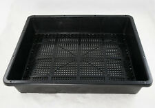 "Black Plastic Tray for Propagation, Bonsai Forest / Group Planting 15""x 12""x 3"""