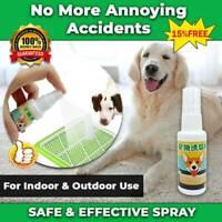 NEW SAFE DOG PUPPY TOILET TRAINING SPRAY PET POTTY TRAINING AID CAT PEE PADS*HOT