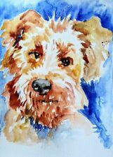 Irish terrier Dog Art original watercolor painting,dog lover best unique gift