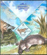 SOLOMON ISLANDS  2013 AUSTRALIAN FAUNA  PLATYPUSES  SOUVENIR SHEET  MINT NH