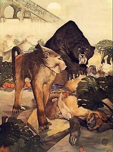 DETMOLD Art Print Jungle Book Bagheera Black Panther MONKEY FIGHT Orangutan Ape