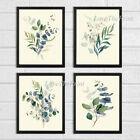Eucalyptus Print Set of 4 Botanical Blue Green Home Wall Art Decor Unframed CMR