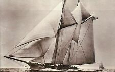 "Racing Yacht "" America ""  1st America's Cup Winner Schooner Ship London Postcard"