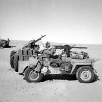 WWII B&W Photo British SAS LRDG Jeep Tunisia Desert 1943  WW2 World War  / 1095