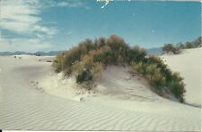 NICE VINTAGE PHOTO POSTCARD WHITE SANDS NATIONAL MONUMENT  NEW MEXICO