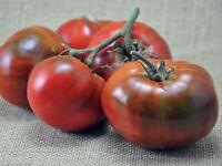 Paul Robeson Tomato, Rare Heirloom, NON-GMO, Beefsteak Type, Variety Sizes Sold