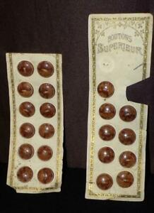 20 MATCHING ORIG 1880 1900 VICTORIAN DRESS BROWN VEGETABLE BUTTONS ON ORIG CARD