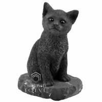 Cat Statuette Made of a Rare Stone Shungite, Kitten Figurine Decor, Tolvu