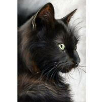 Full Drill DIY 5D Black Cat Diamond Painting Home Decors Embroidery Kits Crafts