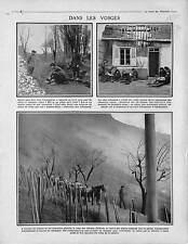 Chasseurs Alpins Diables Bleus Bataille Vosges Ambulance/Vignes Côteaux 1915 WWI