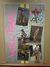 Wild thingss Hot girls man cave car garage Vintage Poster 1989 1877