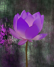 "8 x 10 Metallic Art Photograph ""Oh So Purple Flower"" Wall Decor Picture (SME)"