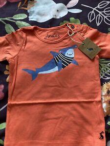 New Joules Baby Boy Orange Shark Print Tshirt, Age 6-9 Months