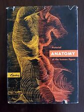 Pictorial Anatomy of the Human Figure 1956 Frederic Taubes First Edition