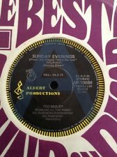 "TED MULRY A RADIO PROMO SUNDAY EVENINGS 45 7"" ALBERT PRODUCTIONS T.M.G. TMG"