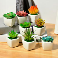 Small Green Succulent Artificial House Plants Ceramic Pot Home Office Decoration