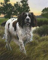 Nigel Hemming SPRING WATCH Springer Spaniels, Art Canine Ltd Edition  #1