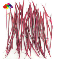 Goose Feathers 20-25cm 8-10 in Carefully Crafted Smooth Dyed Burgundy Biots Juju