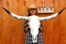 "STEER SKULL LONG HORNS MOUNTED 3' 11"" COW BULL TAXIDERMY LONGHORN H9506"