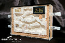 Ant Combo Hybrid Nest Ant Farm A5 Ant Formicarium+Humidity Temperature Meter