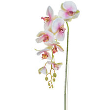 Orchid Phalaenopsis Artificial Silk Trailing 98cm White Pink