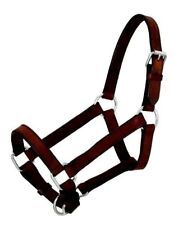 Royal King Miniature Dark Oil Leather Halter Size Small Western Horse Tack