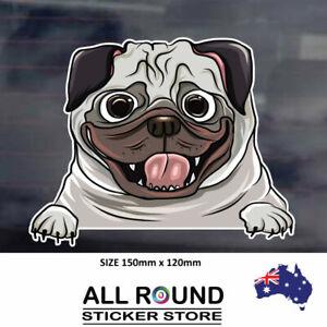 PEEKING-PUG-sticker-CUTE--popular-Ebay-Decal-funny-car-warning-sticker-dog-on-bo