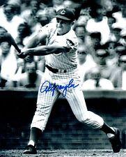 1967-71 Chicago Cubs AL SPANGLER Signed 8x10 Photo #1 AUTO