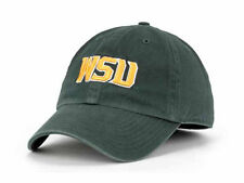 Wright State Raiders Twins Enterprises Forest Green NCAA Franchise Hat Cap Med