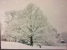 LED Wandbild mit Beleuchtung Baum im Schnee Leuchtbild 40 x 30 cm