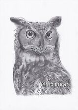Night Owl Pencil Drawing - Wildlife Graphite Sketch - Artwork By M.I -A5/A4/A3 -