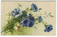 catherine klein beautiful blue flowers artist signed old postcard