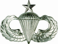 Airborne Wings, Senior Parachutist Badge / Jump Wings / Official***Mirror Finish