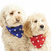 Classic RED or BLUE Star Birthday Puppy Dog Bandana 100% Cotton & Handmade in UK